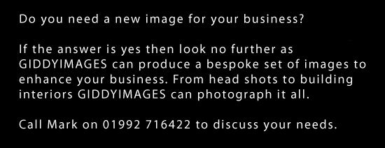 Do you need a new image for your business?